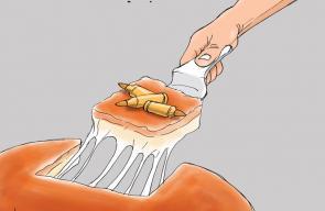 كاريكاتير د. علاء اللقطة   #عملية_نابلس