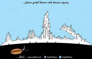 كاريكاتير - علاء اللقطة