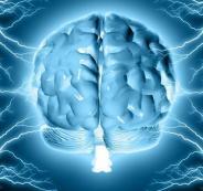 135-204832-corona-world-virus-the-brain_700x400