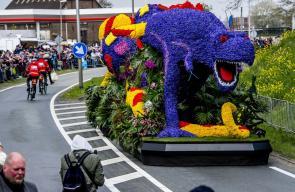 مهرجان الزهور في هولندا.. عروض مختلفة يتم صناعتها من الورود