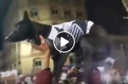 فيديو الهجوم على لاعب الزمالك شيكابالا يثير استهجان واسع والشرطة المصرية تحقق