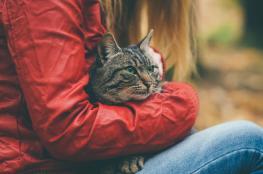 امتلاك الحيوانات الأليفة يجعلك أكثر صحة وسعادة
