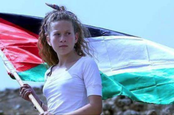 The Palestinian Olive Tree and Ahed Tamimi