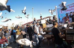 انطلاق موسم سباقات الحمام الزاجل في غزة
