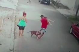 نهاية غير متوقعة.. أقوى كلب في العالم يهاجم بشراسة طفلا صغيرا