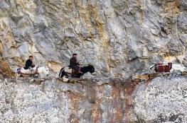 مقتل 13 مسلحا جنوبي أفغانستان