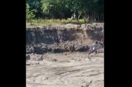 نمر هرب في منطقة نابام وهاجم الناس