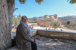 الاحتلال يعتقل حارسا ومُسنة من المسجد الأقصى