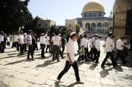 مستوطنون يقتحمون المسجد الأقصى وجماعات متطرفة تحشد ليوم غد