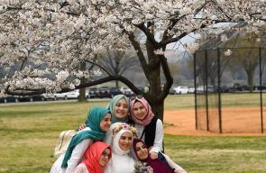 #صور | أمريكيون يتوجهون لالتقاط الصور مع أزهار الكرز في العاصمة واشنطن مع بدء تفتحها .