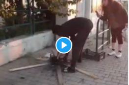 """""""صادم ووحشي""""... شوي قطة في الشارع أمام أعين المارة"""
