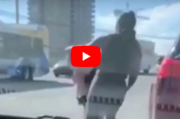 امرأة تسرق كلبا من سيارة وتستخدمه للاعتداء على صاحبته