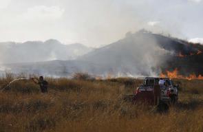 حرائق كبيرة في حقول الاحتلال بفعل الطائرات الورقية الحارقة التي يطلقها الشبان من غزة