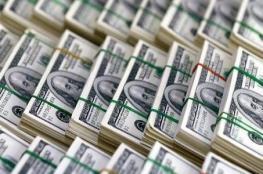 للنظر إليها فقط.. ملياردير يسحب 10 ملايين دولار من البنك