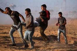 Palestinian killed by Israeli fire in Gaza border