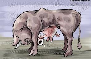 كاريكاتير الإقتصاد الفلسطيني / سباعنة