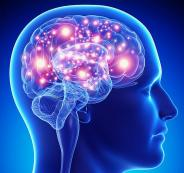 dt_141007_brain_active_stimulation_800x600