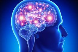 العثور على منطقة الضمير في الدماغ