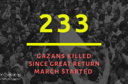 Ministry of health : 233 Palestinians killed since Great Return March started