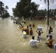 floodee
