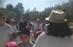 مشاهد بثها مستوطنون للاقتحامات الواسعة بالمسجد الأقصى بحماية قوات الاحتلال قبل قليل