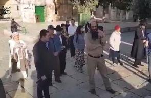 #فيديو 138 مستوطنا يقتحمون المسجد الأقصى المبارك منذ الصباح وحتى اللحظة بحماية قوات الاحتلال