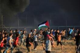 غزة في نيويورك