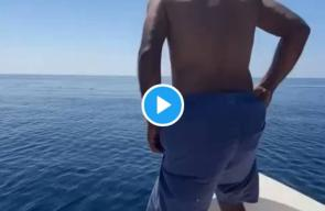 رجل يقفز على ظهر حوت في البحر الأحمر