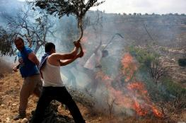 PA: Israel courts afford cover for settler violence