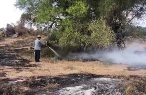 #فيديو اشتعال النيران في