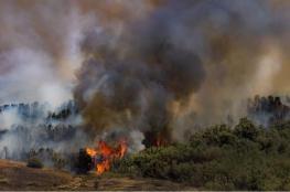 حرائق تلتهم عشرات الدونمات في غلاف غزة