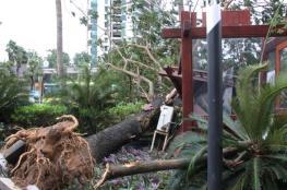 إعصار خانون يشل حركة المواصلات بجنوب الصين