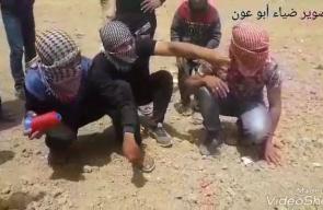 #شاهد لحظة ارسال طائرة ورقية للداخل المحتل تصوير ضياء أبو عون