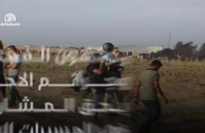 الطواقم العاملة في مخيمات العودة تواصل عملها للأسبوع الـ 17 على التوالي (فلسطين لايف)