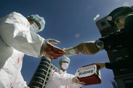 الأعضاء البشرية.. تجارة كارثية تهدد الحاضر والمستقبل
