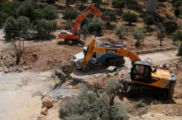 Illegal Colonialist Settlers Uproot Palestinian Farmlands In Nablus