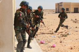 الجيش المصري يعلن مقتل 3 مسلحين وتوقيف 224