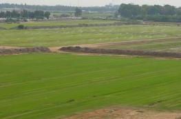 الاحتلال يتلف محاصيل زراعية في الأغوار