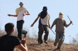 Settler Attacks Palestinians With Axe