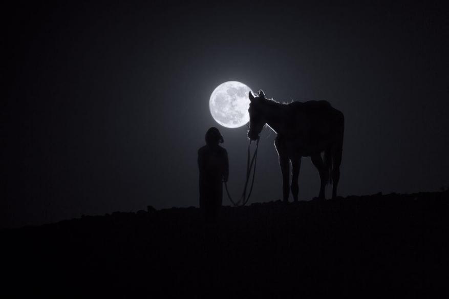 لماذا يظهر القمر مقلوباً في نيوزلاندا؟!