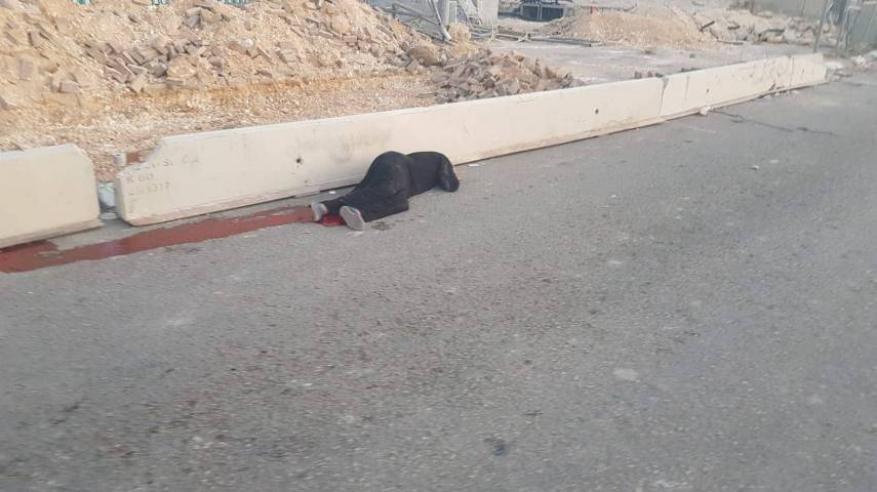 شعبنا سيواصل الرد.. حماس: إعدام الفتاة بقلنديا يعبر عن سادية وإجرامية الاحتلال