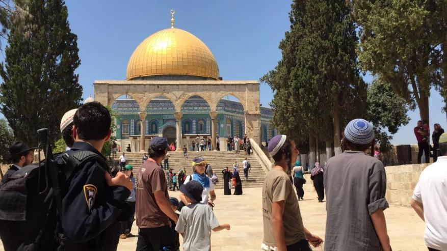 More than 100 settlers break into al-Aqsa today