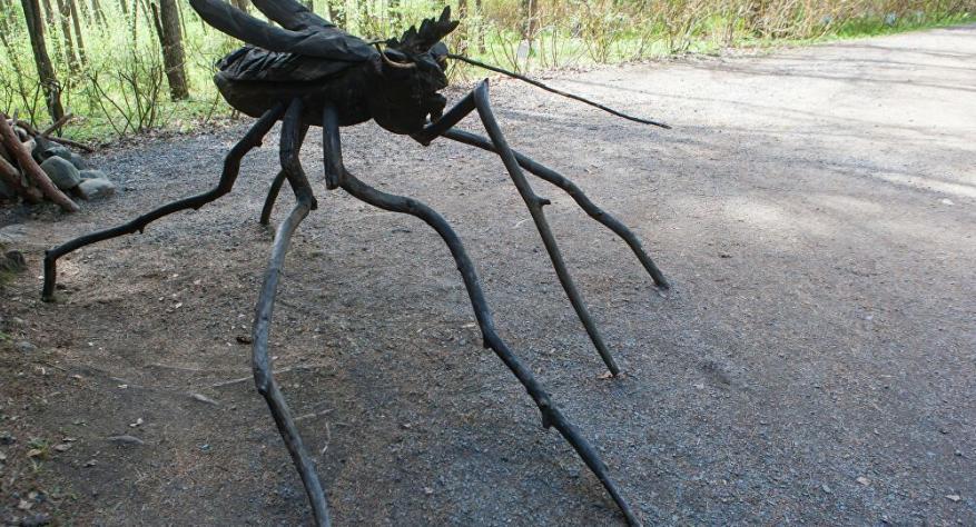 تقنية جديدة للتواصل بين الروبوتات مستوحاة من الحشرات