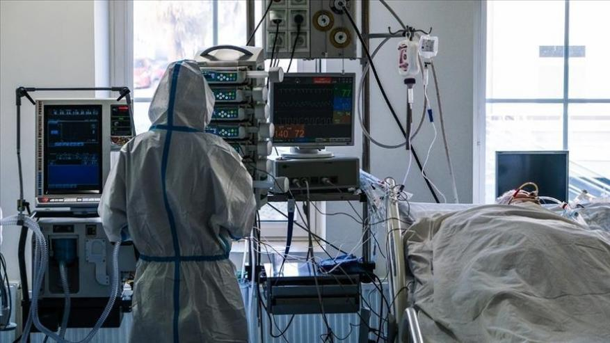 اكتشاف سلالتين جديدتين من فيروس كورونا في روسيا