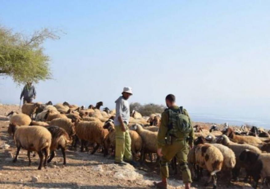 الجيش اللبناني: محاولة إسرائيلية لاختطاف أحد رعاة الماشية