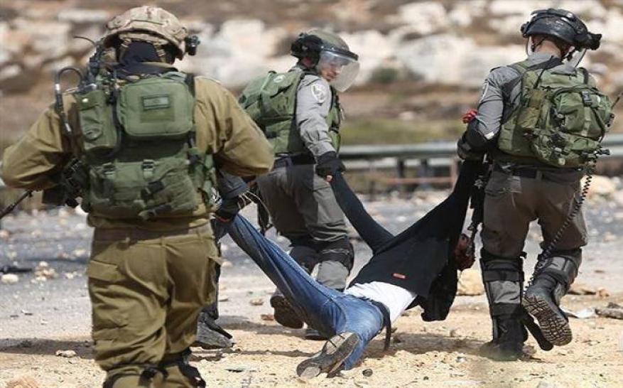 83 منظمة تطالب بمساءلة الاحتلال على جرائمه ضد الفلسطينيين