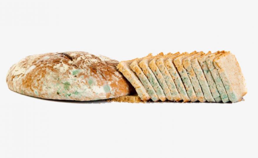 """هذا ما يحدث لجسمك إذا تناولت """"الخبز المتعفن""""!!"""