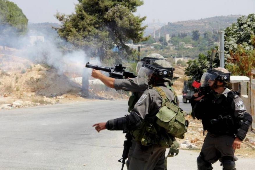 الاحتلال يصيب محام ويعتقله شمال طولكرم