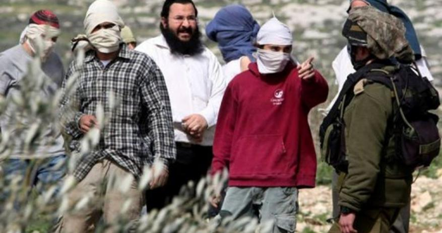 Jewish settlers attack Palestinian kid with pepper spray