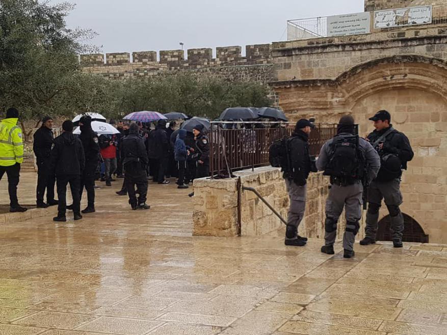 الأقصى يُستباح.. المستوطنون يجتاحون باحات الأقصى تلبية لدعوات صهيونية